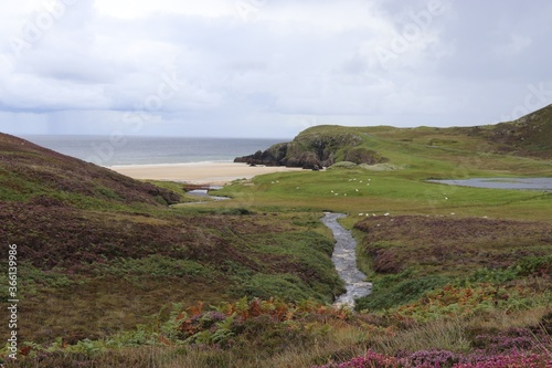 Fotografie, Obraz View of Garry Beach, Isle fo Lewis, Scotland