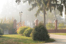 Foggy Morning In The Park