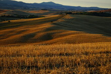 First Sunrise Rays Over The Sweet Hills Of Val D'Orcia, Tuscany, Italy