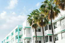 Art Deco Buildings And Palm Tr...