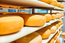 Cheese Factory, Cheese Wheels ...