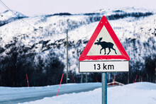 Elk Crossing Road Sign In Winter, Lebesby, Norway