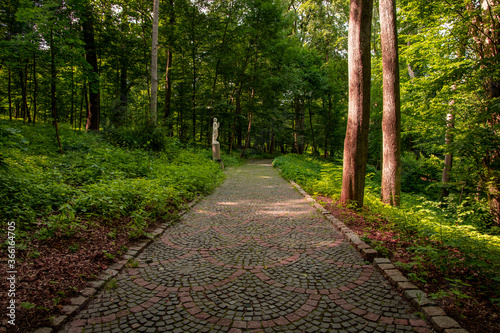 Obraz na plátne summer park outdoor landscape scenic view nature photography with stone paved ro