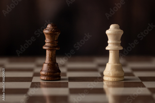 Fotografiet Queens on the chessboard