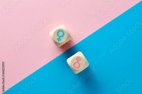 Obraz Male and female sex icons on wooden cubes on pink and blue background. Sex change, gender reassignment, transgender and sexual identity concept. - fototapety do salonu