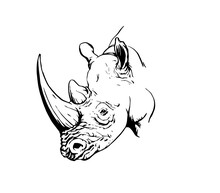 Graphical Rhino Isolated On Wh...