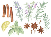Set Of Autumn Herbs And Spices...