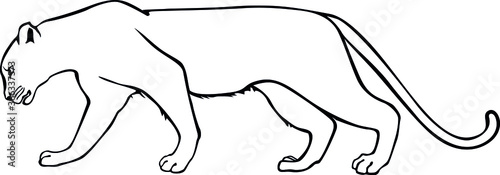 Fotomural Leopard. Panther. Contour vector isolated image.