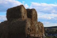 Rolls Of Freshly Cut Hay