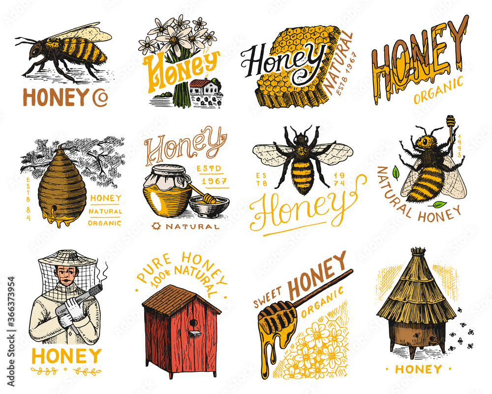 Fototapeta Honey and bees set. Beekeeper man and Honeycombs and hive and apiary. Vintage logo for typography, shop or signboards. Badge for t-shirts. Hand Drawn engrave sketch. Vector illustration.