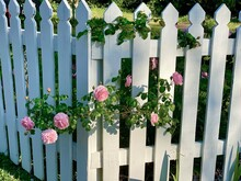 Folkart White Picket Fence Pink Strawberry Rambling Roses