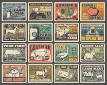 Agriculture And Farming Retro Posters Of Vector Animal, Vegetable And Milk Farm Design. Farm Field, Barn And Tractor, Cow, Chicken, Horse And Pig, Windmill, Wheat, Tomato And Harvest Crop Plants