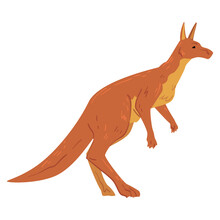 Brown Kangaroo, Wallaby Australian Animal Side View Cartoon Vector Illustration