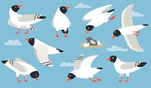 Atlantic Gull Set. Cartoon Sea...