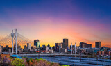 Fototapeta Kawa jest smaczna - Nelson Mandela Bridge over Johannesburg Park Station in Gauteng South Africa