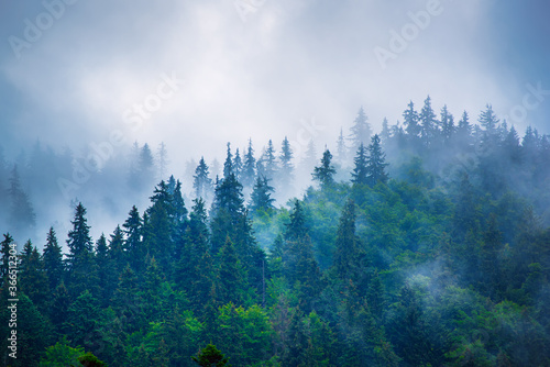 Misty mountain landscape