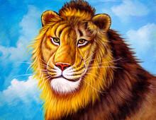 Oil Painting - Lion Face