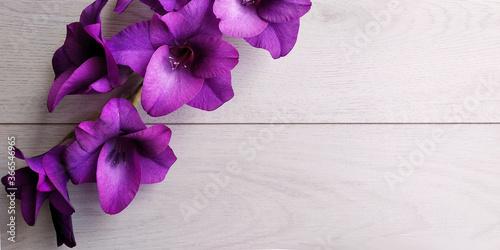 tavolo legno bianco con fiori viola Fototapet