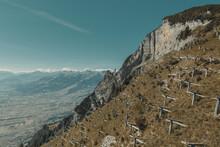 Dreibeinböcke Zum Schutz Der Kleinen Bäume In Den Alpstein Alpen