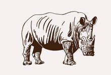 Graphical Vintage Rhino ,sepia...