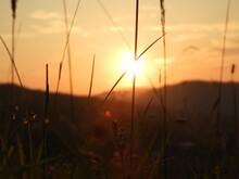 Closeup Shot Of The Bright Sun...