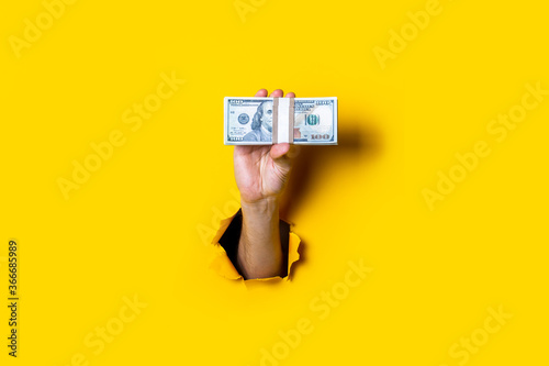 Fototapeta Female hand holds horizontally a bundle of money bills on a yellow background. obraz