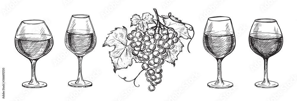 Fototapeta Glass set and Grape hand drawn graphic illustration.