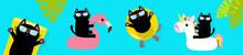 Black Cat Floating On White Flamingo Unicorn Pool Float Water Circle, Mattress. Swimming Pool. Hello Summer. Cute Cartoon Character. Top Air View Banner. Sunglasses. Palm Tree Leaf. Flat Design.