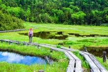 初夏の四十八池湿原
