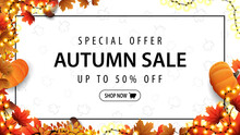 Special Offer, Autumn Sale, Up To 50% Off, White Discount Banner With Frame Of Garland, Autumn Leafs, Pumpkins, Mushrooms And Offer With Button