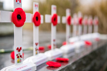 Poppies On Small White Crosses...
