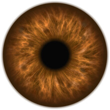 Human Amber Brown Eye Iris Clo...
