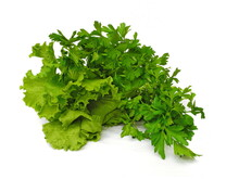 Bunch Of Parsley And Lettuce I...
