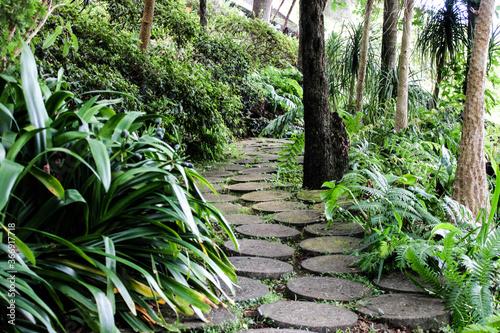 Un camino de piedra en un bosque con arboles y plantas verdes Fototapet