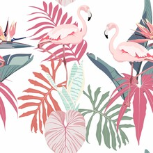 Tropical Pink Flamingo Birds, ...