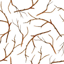 Watercolor Hand Drawn Seamless Pattern With Brown Branches Twigs Without Leaves. Autumn Fall Winter Illustration, Wood Woodland Forest Ecology Environment Design. Outdoor Rustic Elegant Elements.