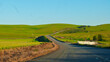 canvas print picture - Meandering road in freshly planted Canola fields between Malmesbury and Durbanville in the West Coast region of the Western Cape, South Africa