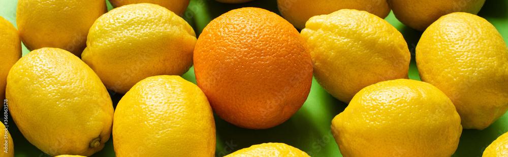 Fototapeta fresh ripe yellow lemons and orange on green background, panoramic crop