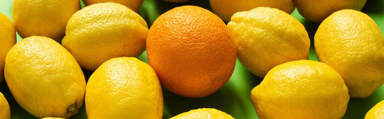 Obraz na płótnie Canvas fresh ripe yellow lemons and orange on green background, panoramic crop