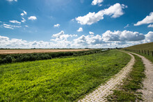 Alluvial Land Of The Dollar In Front Of The Dike On The North Sea In Summer With A Blue Sky