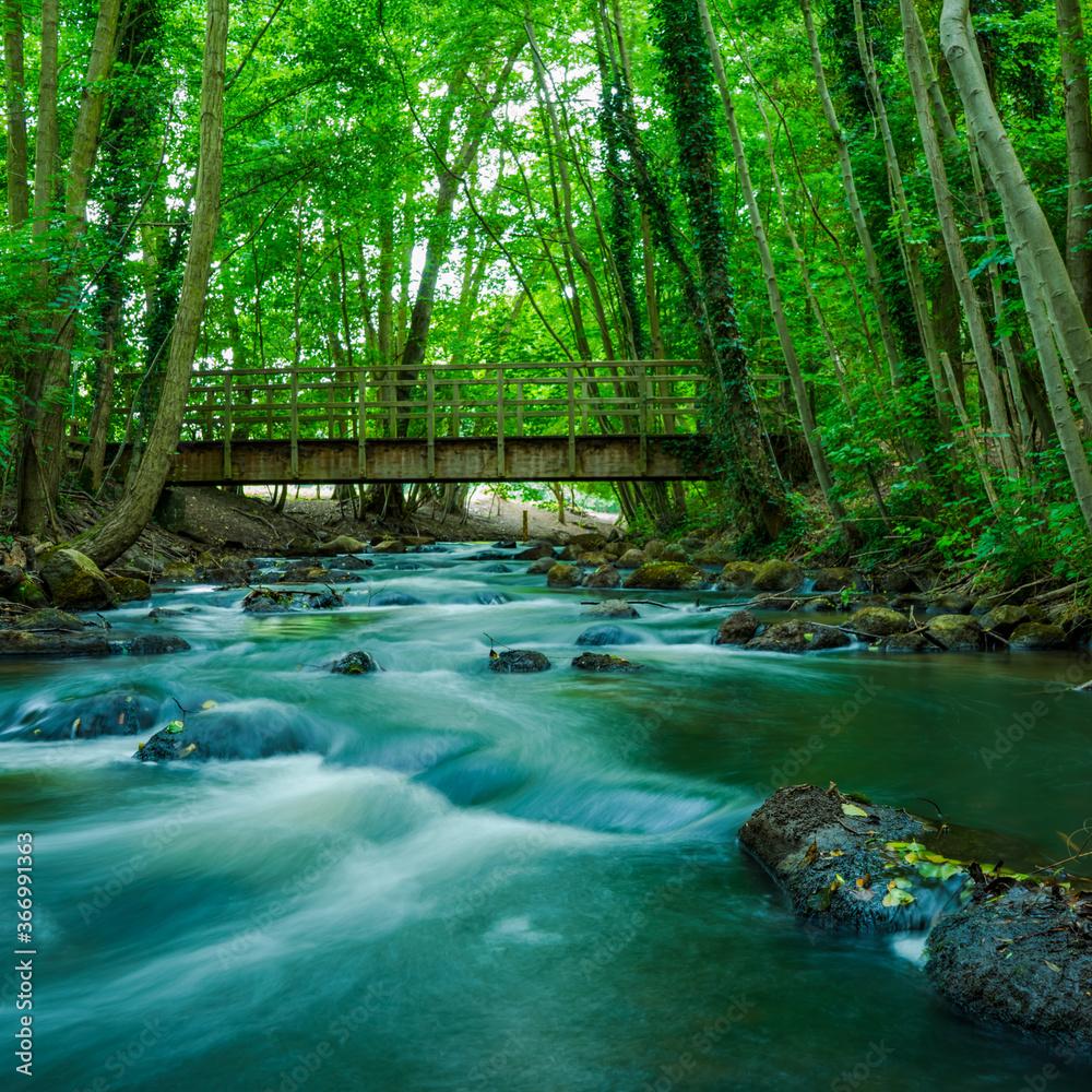 Der Strom an der alten Tiesorter Mühle. waterfall in the forest