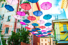Multicolored Open Umbrellas Ha...