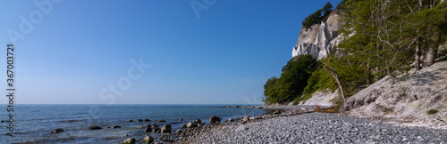 Fototapeta panoramic view to the gorgeous chalk cliffs of the Danish island of Møns by the Baltic Sea obraz