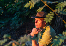 American Traveler Mature Man In Cowboy Hat Is Looking At Sunset Sitting In Forest Behind Trees And Relaxing. Beautiful Sunset Light. American Style.