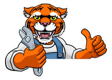 A Tiger Cartoon Animal Mascot Plumber, Mechanic Or Handyman Builder Construction Maintenance Contractor Peeking Around A Sign Holding A Spanner Or Wrench And Giving A Thumbs Up