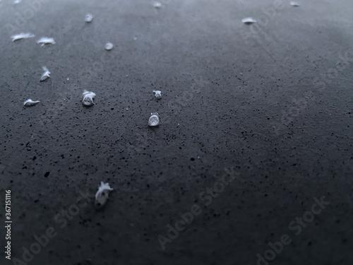 Fotografía waterdrops macro image on dark grey porous concrete on the holocaust memorial in