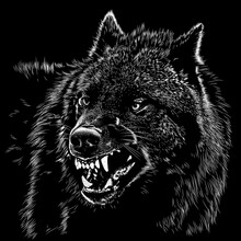 Wolf Animal Illustration, Nature Conservation Vector