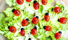 Lettuce And Ladybugs Made Of T...