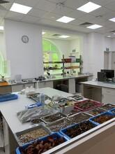 Laboratoire Du Jardin Botanique à Singapour