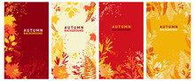Vector Set Of Abstract Backgrounds - Autumn Sale - Bright Banners, Posters, Cover Design Templates, Social Media Wallpaper Stories With Yellow And Orange Leaves